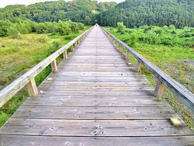 天国に向かうかのような神秘的な超長い木製の橋が静岡県島田市にあった