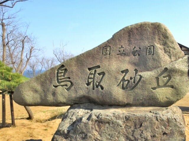 鳥取砂丘は砂場というより起伏のある丘だった。