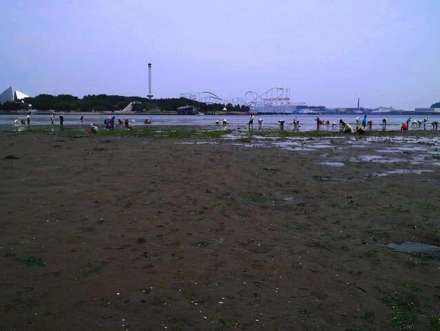 海の公園 全景1