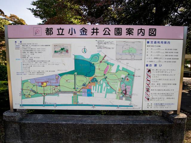江戸東京たてもの園 小金井公園案内図