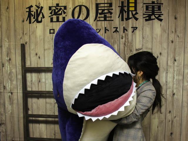 ゆかちぃさんがきっと欲しがる超特大サイズのサメ!「ねむねむ かむかむズ メガBIG」が限定登場