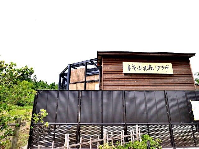 佐渡島トキの森公園トキふれあいプラザ建物