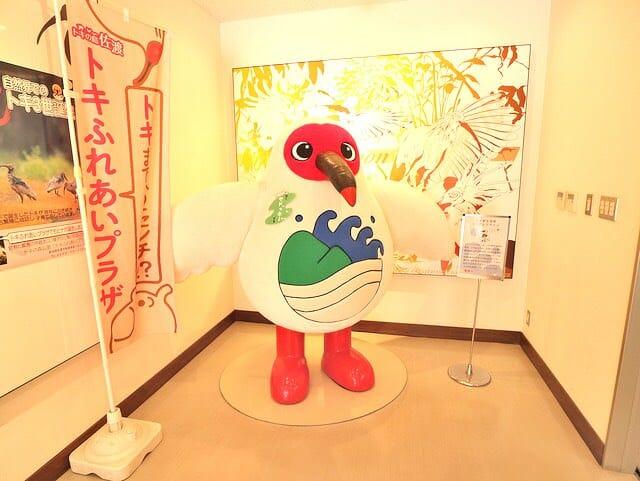 佐渡島トキの森公園トキ展示資料館サドッキー