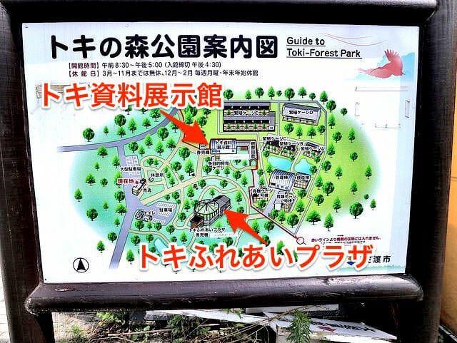 佐渡島トキの森公園案内図