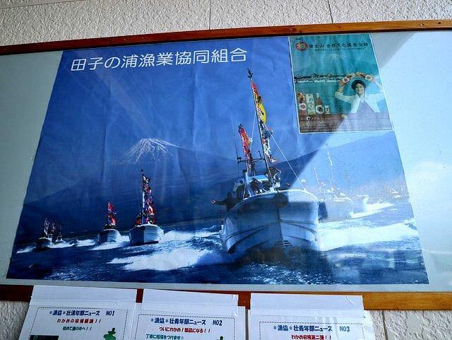 しらす田子の浦港漁協食堂CMポスター