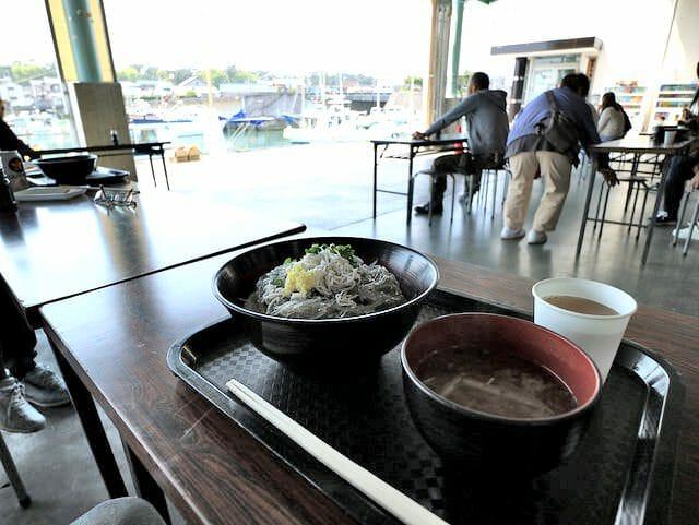 しらす田子の浦港漁協食堂富士山盛り景色