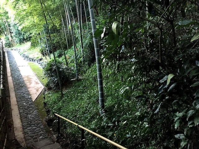 竹採公園帰り下り通路