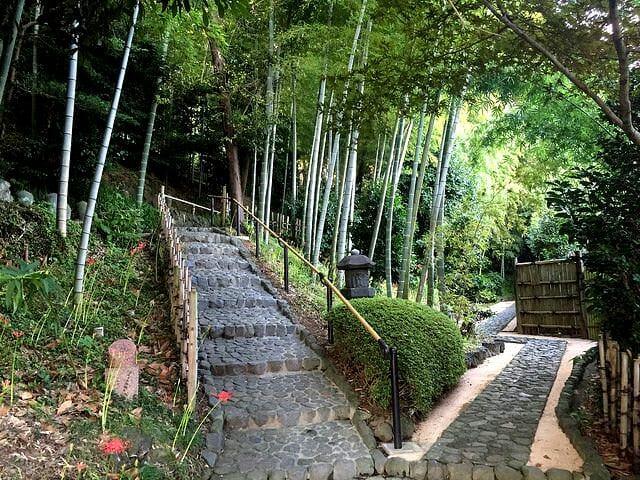 竹採公園左上が白隠禅師墓所
