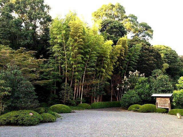 竹採公園神来の庭