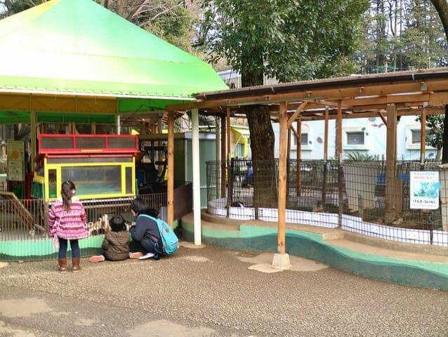 町田リス園ウサギ小屋