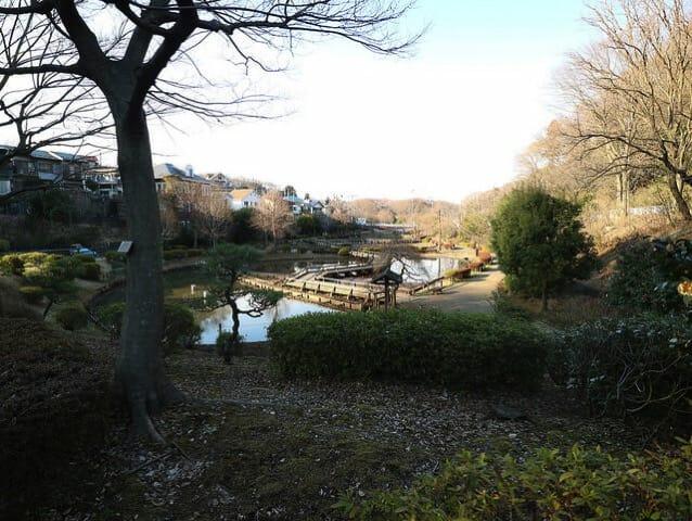 薬師池公園全景