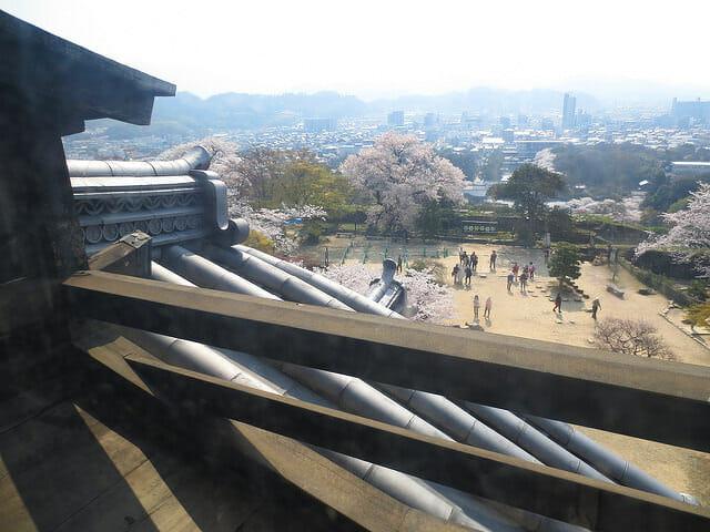 彦根城眺望