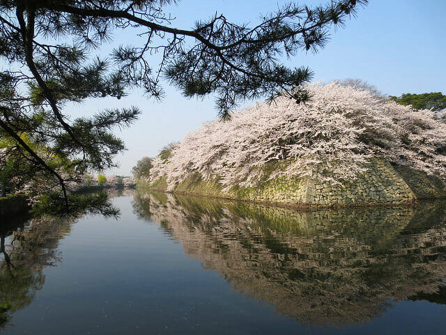 彦根城堀井