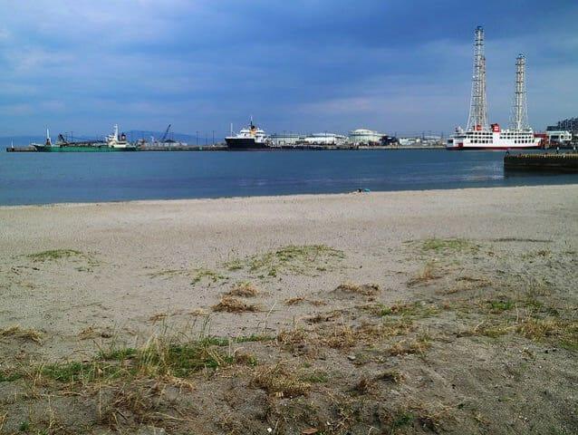 ペリー公園前久里浜海岸