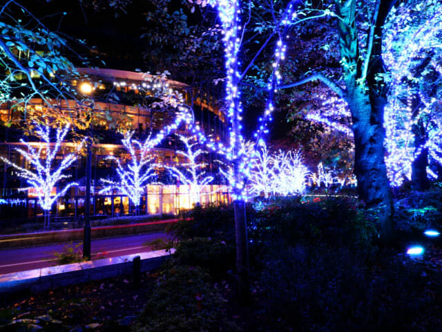 東京ミッドタウン クリスマス2016イルミネーション 5 1スターライトロード