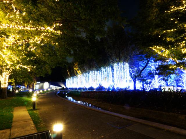 東京ミッドタウン クリスマス2016イルミネーション 4シャンパン イルミネーション