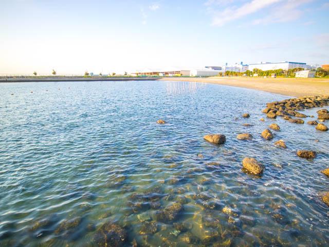 潮干狩り東扇島東公園 人工海浜