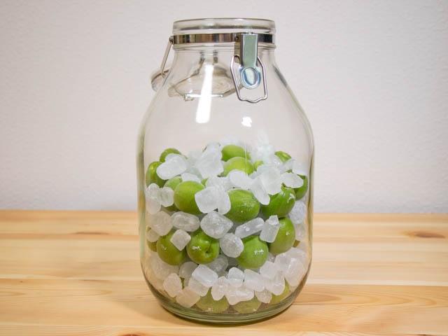 無印良品梅酒 作り方9 梅の実と氷砂糖を交互入れ