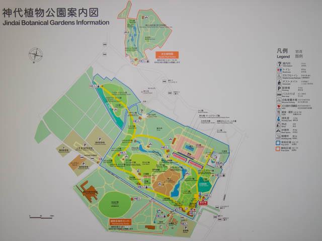 神代植物公園 案内図