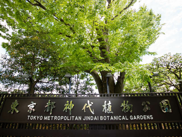 神代植物公園 看板